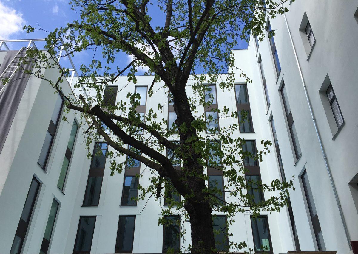 BauvorhabenHotel am Wittenbergplatz 3, 3a10789 Berlin